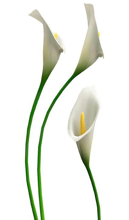 Dekor Flower (Flat E)