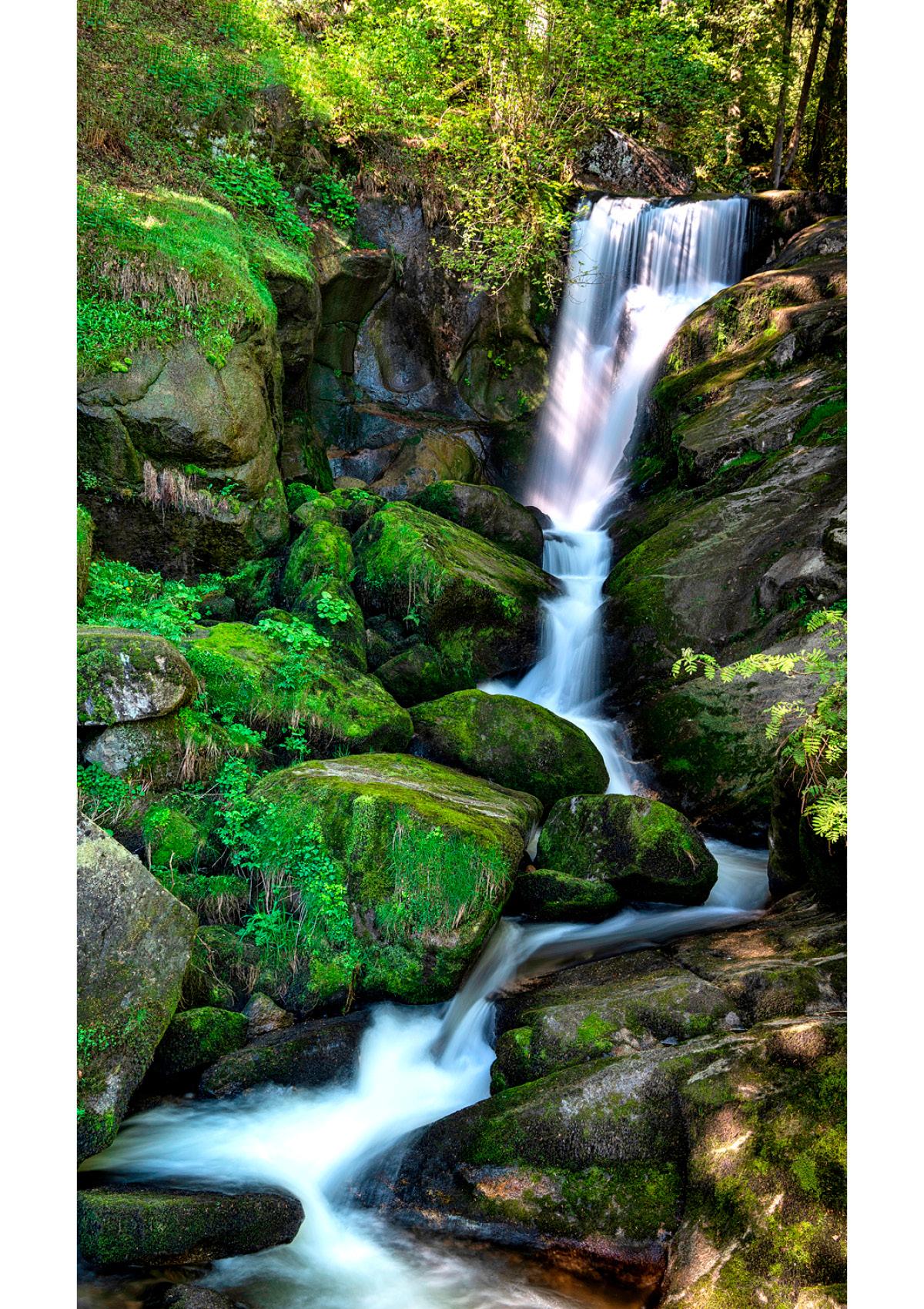 Dekor Grüner Wasserfall (Flat E)