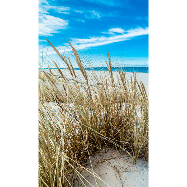 DK Rückwand Flat M in glanz oder matt | Strandidylle | Antibakterielle Oberfläche