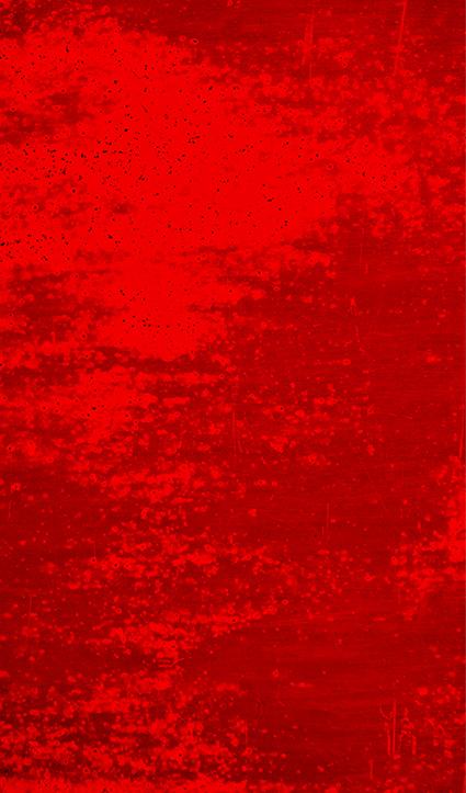 Dekor Roter Traum (Flat E)