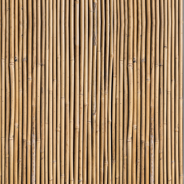 DK Rückwand Flat E Bambusrohr | Dekor: einseitig