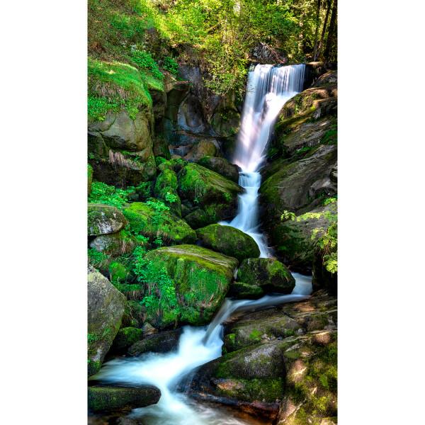 DK Rückwand Flat M in glanz oder matt | Grüner Wasserfall | Antibakterielle Oberfläche
