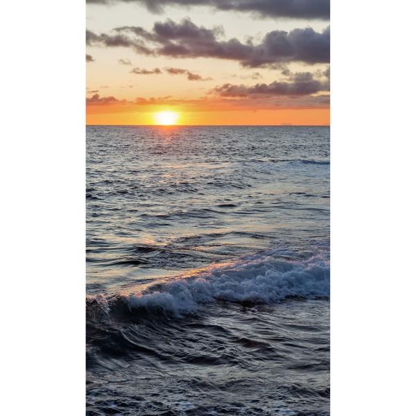DK Rückwand Flat M in glanz oder matt   Sonnenuntergang   Antibakterielle Oberfläche